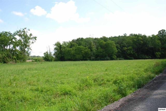 Lot 14 Loposser Hollow Road, Seymour, TN 37865 (#223679) :: SMOKY's Real Estate LLC