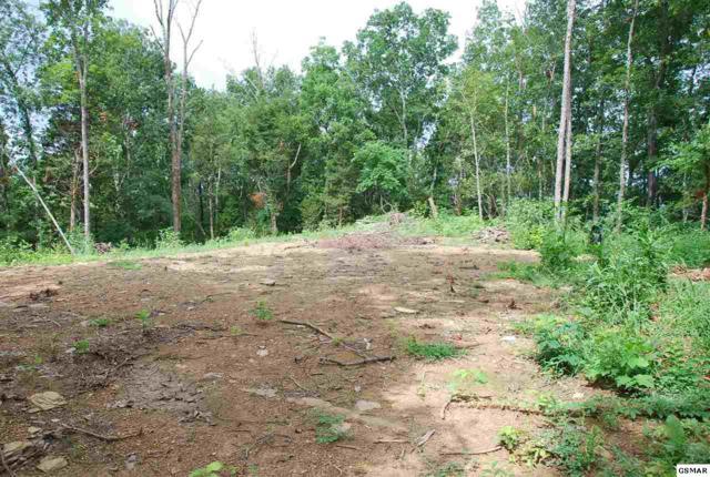 646 Loposser Hollow Road, Seymour, TN 37865 (#223680) :: SMOKY's Real Estate LLC