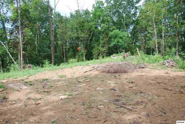 Lots 13 & 14 Loposser Hollow Road, Seymour, TN 37865 (#223681) :: SMOKY's Real Estate LLC