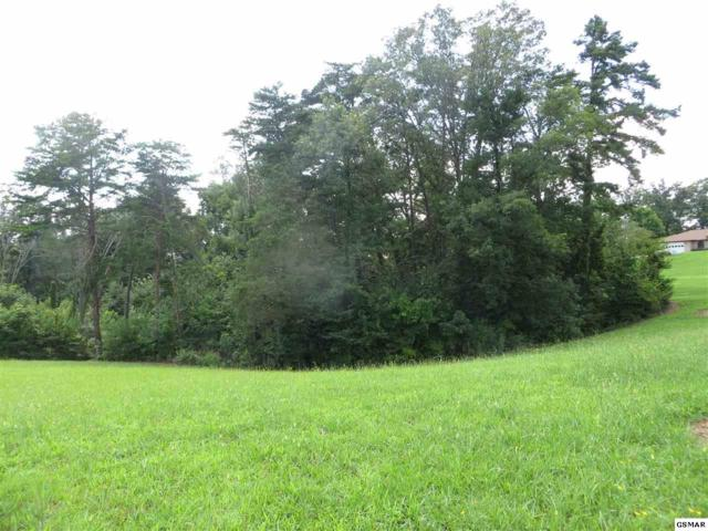 3109 Renee, Sevierville, TN 37725 (#223690) :: Colonial Real Estate