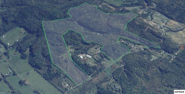 4162 Snyder Rd 183 Barlett Dri, Kodak, TN 37764 (#223691) :: Colonial Real Estate
