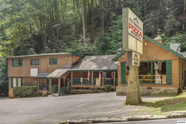 631 Ski Mountain Rd., Gatlinburg, TN 37738 (#223692) :: Four Seasons Realty, Inc