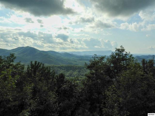 Lot 18 Laurel Top Way, Gatlinburg, TN 37738 (#223709) :: Four Seasons Realty, Inc