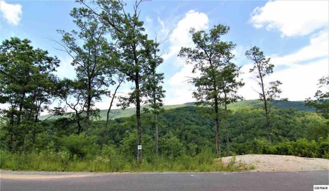 Lot 171 Smoky Bluff Trail Lot 171, Sevierville, TN 37862 (#223712) :: The Terrell Team