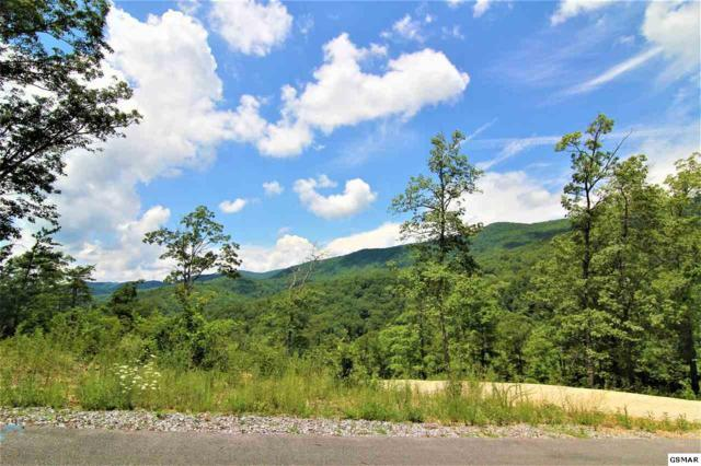 Smoky Bluff Trail Lot 173, Sevierville, TN 37862 (#223714) :: The Terrell Team