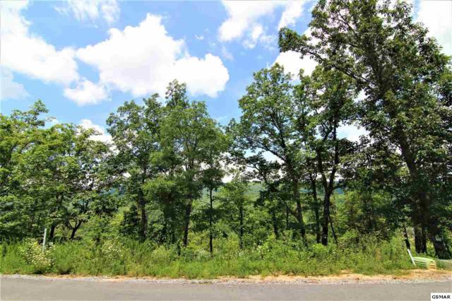 Smoky Bluff Trail Lot 174, Sevierville, TN 37862 (#223715) :: The Terrell Team