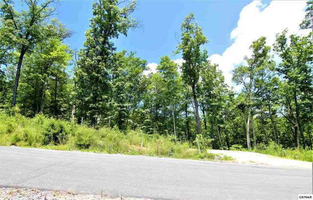 Winterberry Trail Lot 183, Sevierville, TN 37862 (#223719) :: The Terrell Team