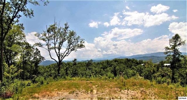 Winterberry Trail Lot 184, Sevierville, TN 37862 (#223720) :: The Terrell Team