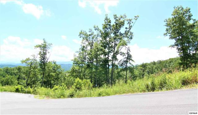 Winterberry Trail Lot 185, Sevierville, TN 37862 (#223721) :: The Terrell Team