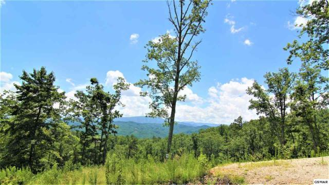 Winterberry Trail Lot 186, Sevierville, TN 37862 (#223722) :: The Terrell Team