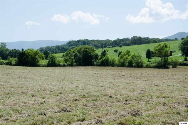 lot 9 Old Newport Hwy, Sevierville, TN 37876 (#223734) :: Prime Mountain Properties