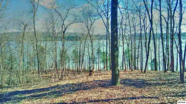 247 E Shore Drive, Rockwood, TN 37854 (#223762) :: Four Seasons Realty, Inc