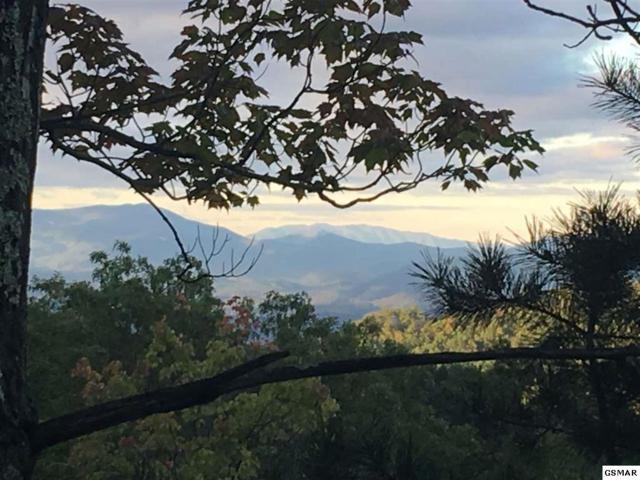 Alpine Alpine Dr Lots 1 3A 3B, Sevierville, TN 37876 (#223765) :: Four Seasons Realty, Inc