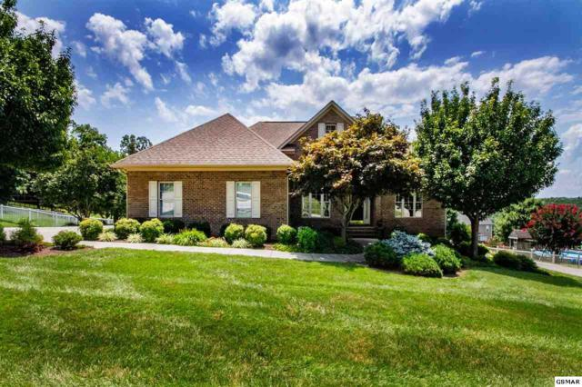 1132 Hickory View Drive, Morristown, TN 37814 (#223771) :: Colonial Real Estate