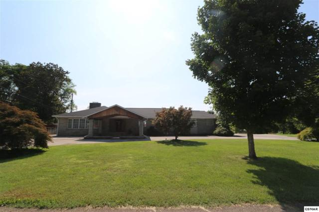 1536 Cliffside Lane, Knoxville, TN 37914 (#223787) :: The Terrell Team