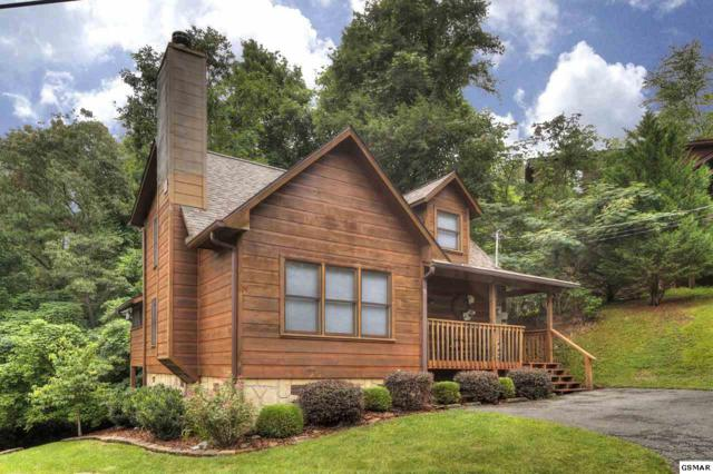 309 Elk Cove Way, Gatlinburg, TN 37738 (#223864) :: Colonial Real Estate