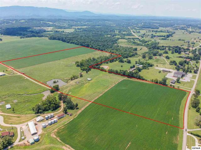 3210 Old Niles Ferry Road Lot D, Maryville, TN 37803 (#223881) :: Colonial Real Estate