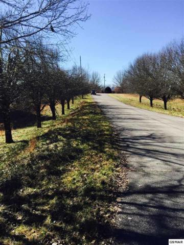 LOT 12 HOPSON STREET Royal Heights, Sevierville, TN 37876 (#223919) :: Four Seasons Realty, Inc