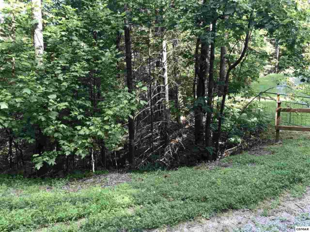 Lot 8 Pinetree Way, Sevierville, TN 37876 (#223920) :: The Terrell Team
