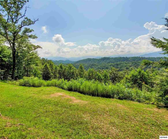 226 Fencerail Gap, Walland, TN 37886 (#223925) :: Prime Mountain Properties