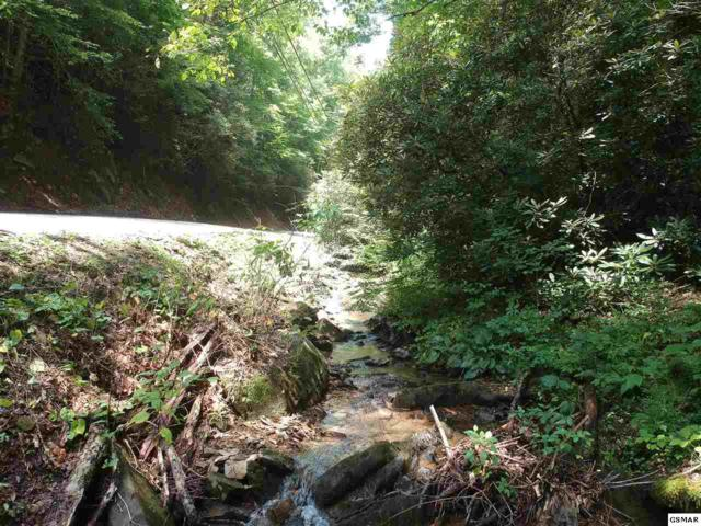 Lot 14 Butler Branch Rd, Gatlinburg, TN  (#223933) :: Prime Mountain Properties