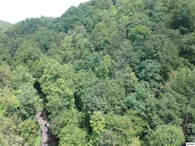 Lot 15 Butler Branch Rd, Gatlinburg, TN 37738 (#223934) :: Prime Mountain Properties