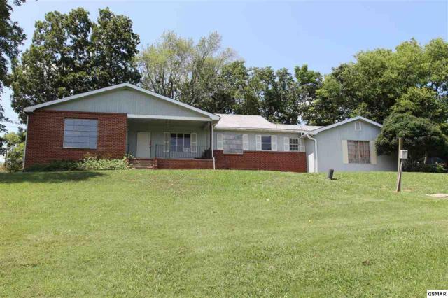 10918 Chapman Hwy, Seymour, TN 37865 (#223942) :: Colonial Real Estate