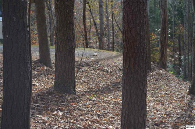 White Oak Lane, Townsend, TN 37882 (#223943) :: Colonial Real Estate