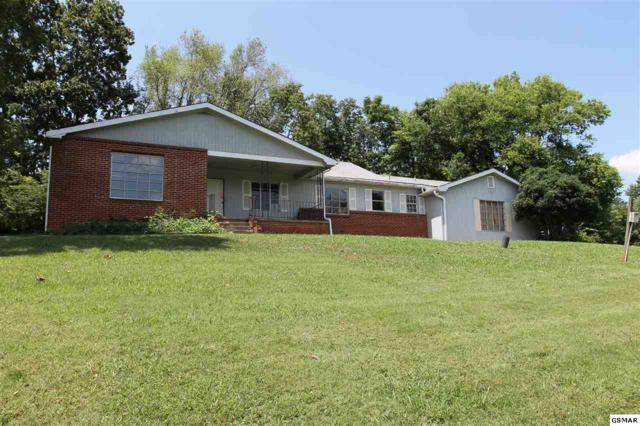 10918 Chapman Hwy, Seymour, TN 37865 (#223947) :: Colonial Real Estate