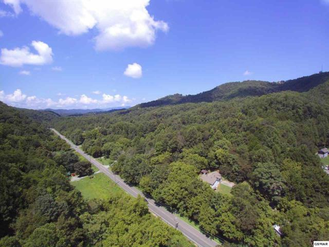 1876 Upper Middle Creek Rd, Sevierville, TN 37876 (#223953) :: Colonial Real Estate