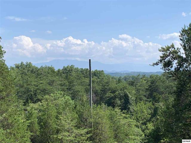 Pleasure Road, Sevierville, TN 37876 (#223976) :: Four Seasons Realty, Inc