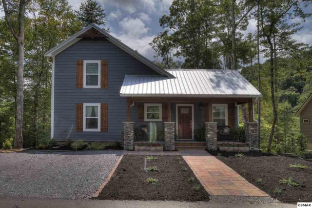 194 Cold Springs Trace, Townsend, TN 37882 (#223985) :: Colonial Real Estate