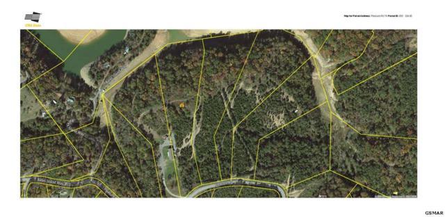 Lot 11 Pleasure Rd, Sevierville, TN 37876 (#224007) :: Four Seasons Realty, Inc