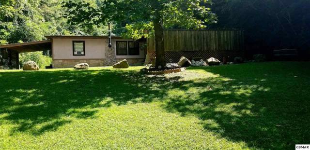 1069 Bryan View Rd, Sevierville, TN 37862 (#224032) :: Jason White Team | Century 21 Four Seasons
