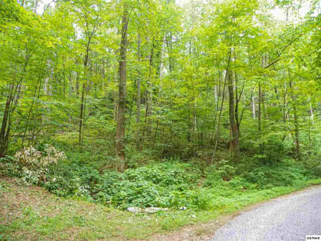 Lot# 8 Brooke Hollow Lane, Sevierville, TN 37862 (#224036) :: The Terrell Team