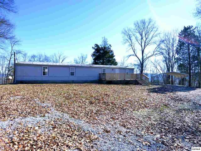 1294 Friends Station Rd, New Market, TN 37820 (#224049) :: Colonial Real Estate