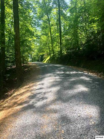 Brooke Hollow Lane, Sevierville, TN 37862 (#224050) :: Tennessee Elite Realty