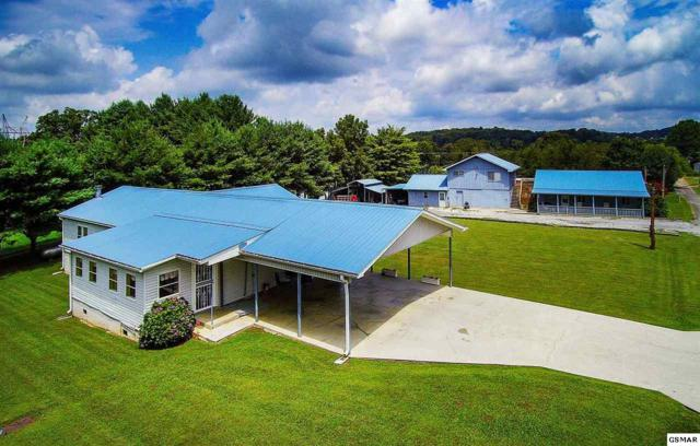 2141 Douglas Heights Rd, Dandridge, TN 37725 (#224052) :: Colonial Real Estate