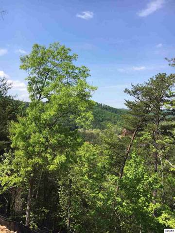 Parkside Retreat Way Lot 79, Pigeon Forge, TN 37863 (#224630) :: Colonial Real Estate