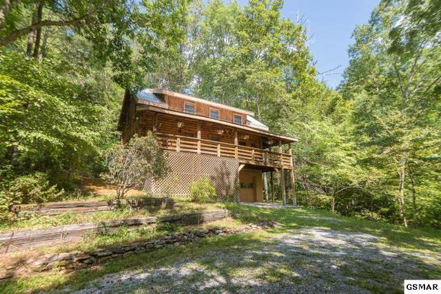 1224 Chavis Rd 1224 Rocky Flat, Cosby, TN 37722 (#224637) :: Colonial Real Estate
