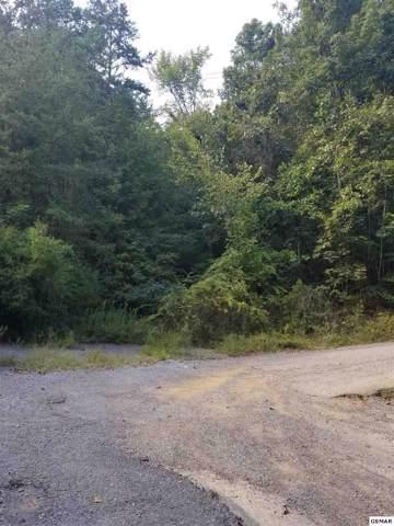 Lot 31 Deer Browse Way, Sevierville, TN 37876 (#224638) :: The Terrell Team