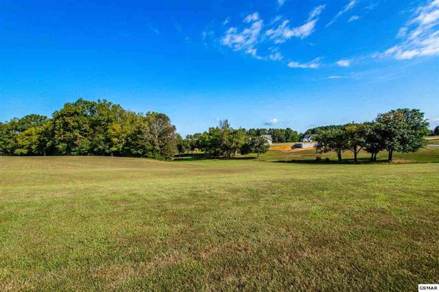 Lot 74 Early Morning Ln, Dandridge, TN 37725 (#224661) :: Four Seasons Realty, Inc