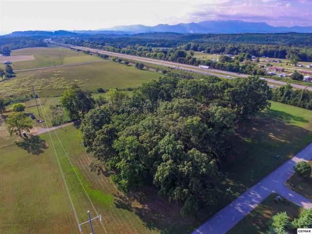 Lot 113 & 116 Wild Pear Trail, Dandridge, TN 37725 (#224666) :: Four Seasons Realty, Inc