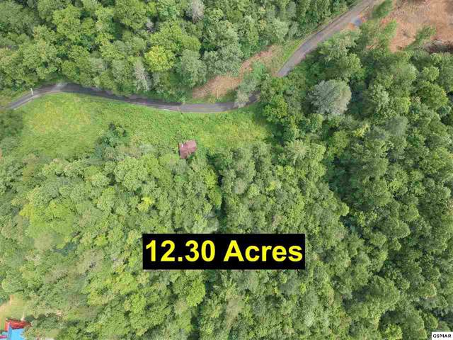 Grassy Branch Rd, Sevierville, TN 37876 (#224687) :: Prime Mountain Properties