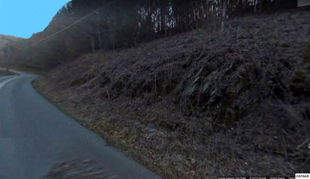 Parcel 031.01 Boogertown Rd, Sevierville, TN 37876 (#224698) :: Colonial Real Estate