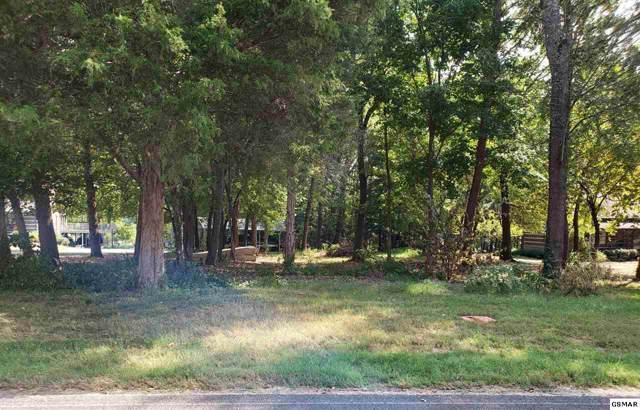 Lot 6 Lake Ridge Dr, Dandrigde, TN 37725 (#224736) :: Colonial Real Estate