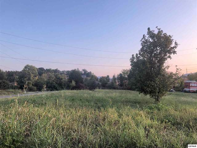 1450 Catlettsburg Road, Sevierville, TN 37876 (#224745) :: The Terrell Team