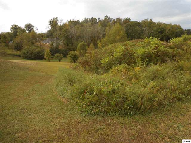 Lot 62 Sanctuary Shores Way, Sevierville, TN 37876 (#224763) :: The Terrell Team