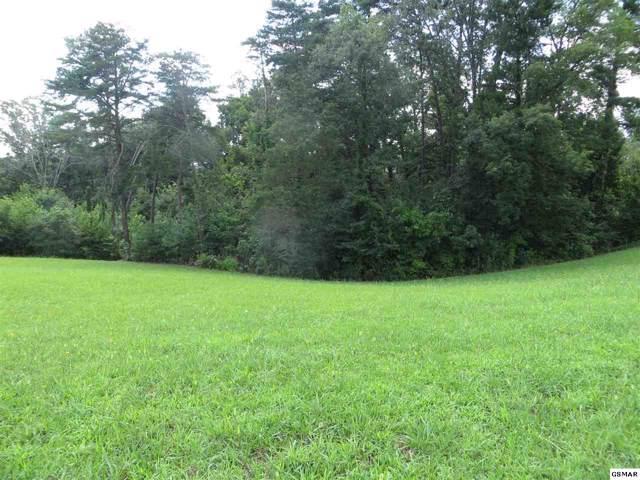 221 S Flat Creek Rd, Sevierville, TN 37876 (#224787) :: Prime Mountain Properties