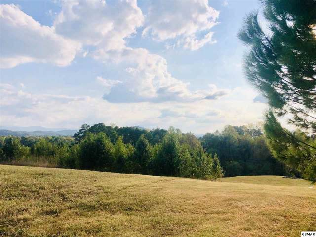 Lot 44 English Hills Dr, Sevierville, TN 37876 (#224791) :: Billy Houston Group